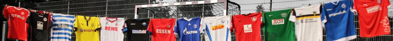 Fanprojekt Leverkusen e. V.